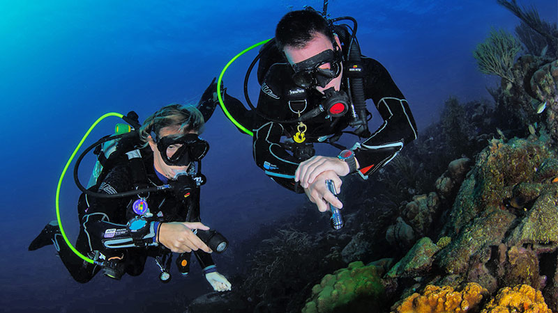 recreational-dive-courses